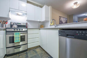 1br - 510ft2 - Bright with View of Bay & N. Shore, parking, gas