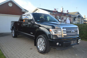 2013 Ford F-150 Platinum Camionnette