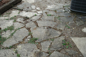 Gone ppu Flagstone - Free
