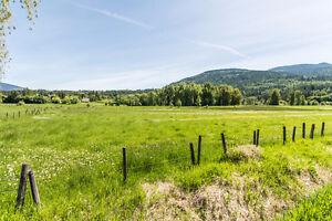 #6 1380 10th Street, SW Salmon Arm - New 55+ subdivision Revelstoke British Columbia image 10