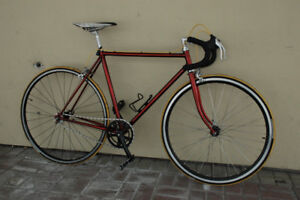 ruby red Norco Ishiwata resto