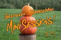 Halloween Mini Sessions