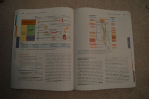 Essentials of Human Anatomy & Physiology Windsor Region Ontario image 2