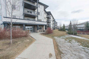Well Cared For One Bedroom Condo In West Edmonton