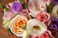 Florist in Pointe Claire looking for a part time sales person