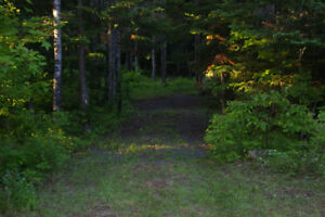Large treed private camp lots available