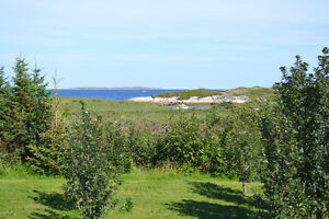 AMAZING home and property for sale! St. John's Newfoundland image 9