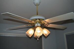 Ceiling Fan & Light Fixture