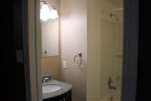 One bedroom apartment minutes from Stavanger St. John's Newfoundland image 3