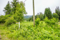 129 Watershed Rd, Enderby--best bargain in a small acreage