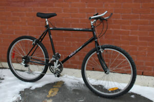 Velo Sport - great condition winter rider!