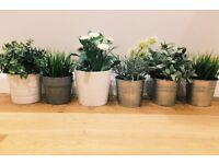Six ikea artificial plants in various plant pots