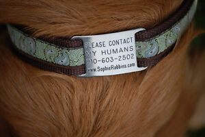 Anyone do pet tag engraving?