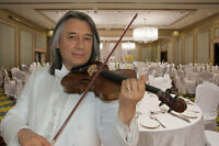 Violoniste, occasion special !!!
