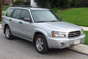 Looking for Subaru Forester/Jeep Patriot SUV