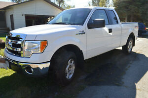 Reduced! 2014 Ford F-150 XLT 5.0 litre 4X4 Pickup Truck
