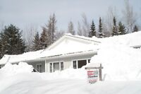 ROOF and DECK SNOW REMOVAL