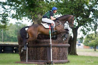 Riding lessons from Irish International 3 Day Event rider