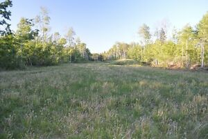 Build your Country Dream Home on 45.5 acres just north of G.P.