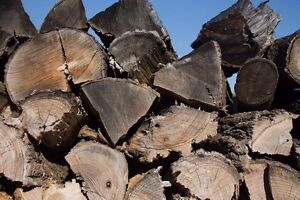 Firewood - Last Year! - Get it before December 31rst