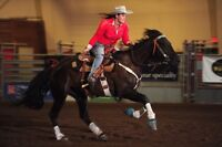 Western riding lessons okotoks