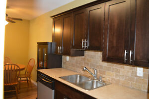 Fully Renovated 2 bed condo rented at $1100 pm