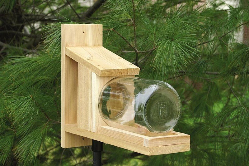 How To Build A Squirrel Feeder Jar Ebay
