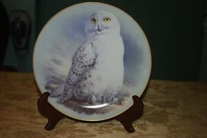 Assiette de collection par Raymond Watson , 'The Snowy Owl'