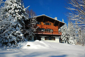 Swiss Chalet Spa Dans Les Montagnes!