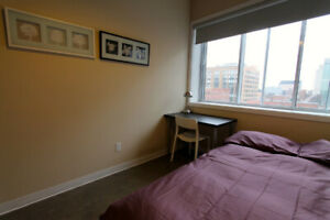 1 Bedroom in Loft Downtown - August 26 - Furnished/All Inc