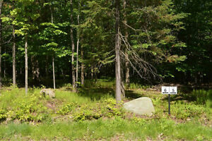 5 Acre Lots for Sale in Beautiful Brome Lake area of Townships