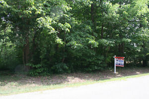 1 ACRE BUILDING LOT!