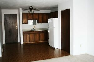 226 Acadie ( walking distance to Champlain Mall ) 1 bedroom