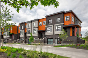 2200 SqFt Executive 4 Bedroom 4 Bathroom Townhome In South End