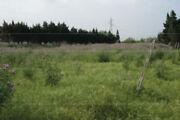 Terreno in vendita a Barcellona Pozzo di Gotto -...