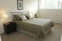**BACHELOR DOWNTOWN-$889-JULY 1ST-UTILITIES INCLUDED**