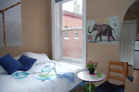 Large room furnished, Sandy Hill: 5 min walk from campus