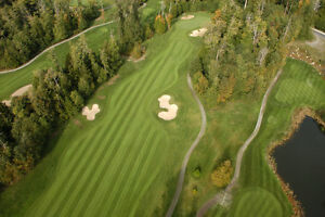 Aerial Photography and Video London Ontario image 3