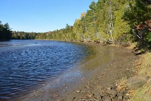 Riverfront Private with Mature Forest - 2.44 Acres