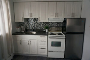 LARGE STUDIO IN STE ANNE AVAIL NOW CLOSE TO ABBOTT OR MCGILL