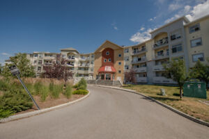 Motivated Seller - Large 1 Bed+Den Mainfloor Unit in Airdrie