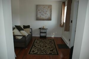 Furnished 1-Bedroom Apartment