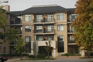 Glebe area - Luxury 2 bedroom penthouse condo for rent