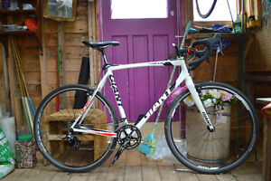 Giant TCX Great Condition large frame