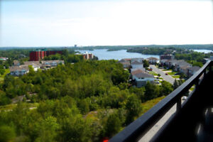 Lockerby Towers - 1 bdrm renovated units!