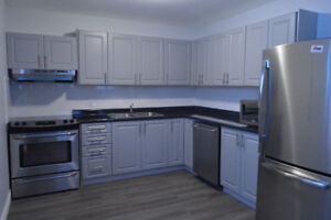 3bedrooms/1bath lower level apartment in North East Barrie