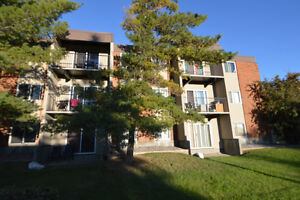 15519 98 Ave - HUGE WESTEND RENOVATED 2 BDR - MUST SEE!!!