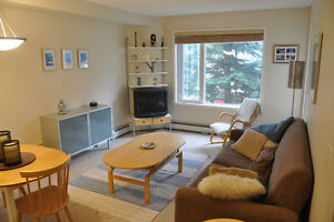1 Bedroom + Den Arbour Lake Condo Minutes From C-Train + Lake