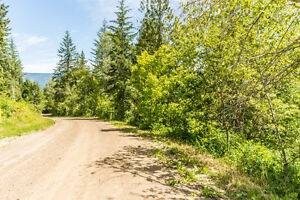 5380 5 Avenue SW Salmon Arm - Affordable 5 acre property