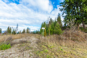 1017 10 Avenue, SE Salmon Arm - Build Your Dream Home!